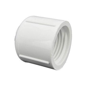 PVC Cap Fipt